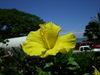 Hawaii_053