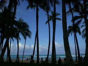 Hawaii_084_2